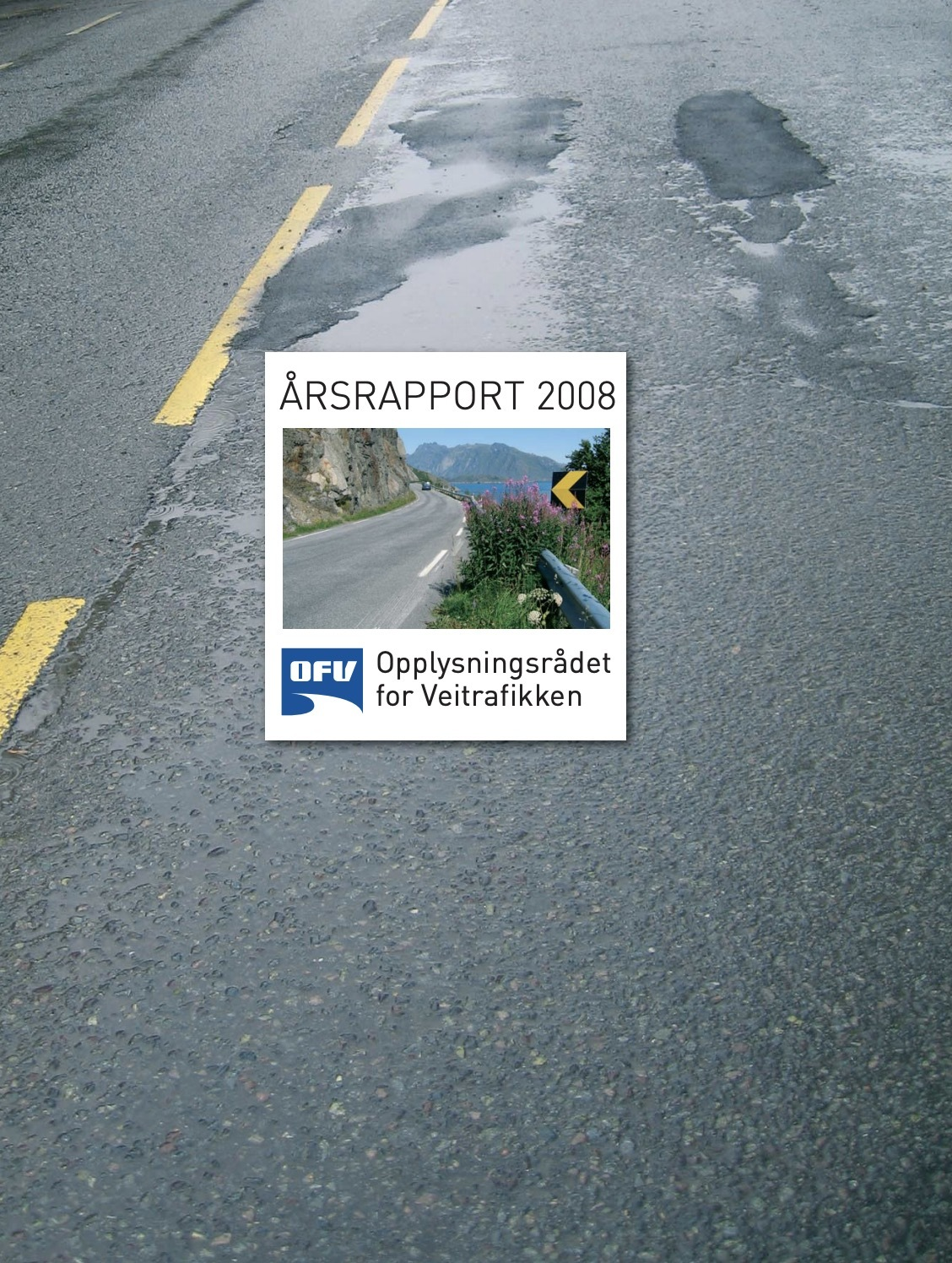 Aarsrapport2008