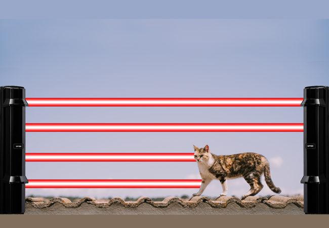Optex animal tolerance outdoor detection