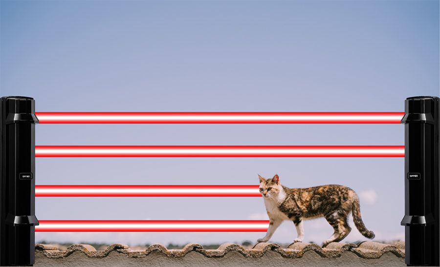 Tech Tip Animal tolerance for outdoor detection web