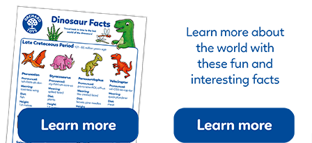 Fun free facts about the world including animal habitats and space.