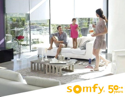 Somfy Blind Motors
