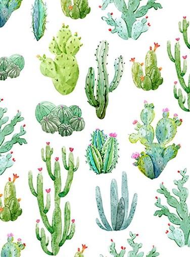 Cactus White Floral Roller Blind