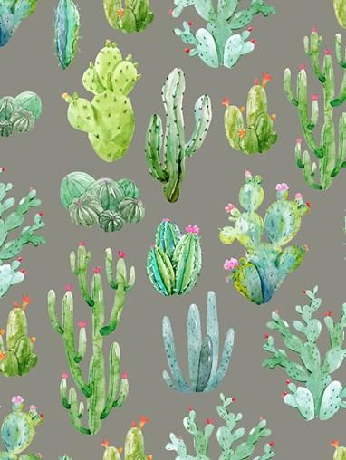 Cactus Dark Grey Floral Roller Blind