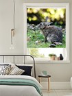 Electric Photo Blinds - Made To Measure Personalised Roller Blinds