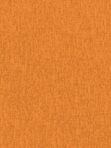 Victoria Tangerine Daylight Roller Blind
