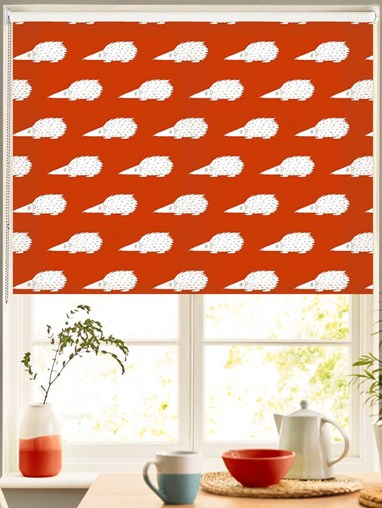 Prickles on Pumpkin Roller Blind by Amanda Redwin