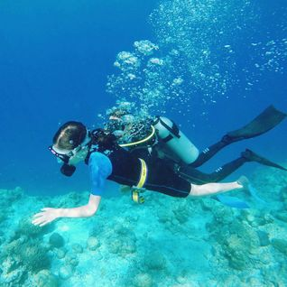 Scuba diving the house reef