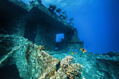 Wreck Dive, Grenada