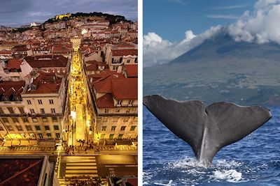 Lisbon and scuba diving the Azores, Portugal