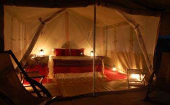Picture of a Tent on the Private Dive Safari