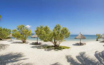 Picture of Nice beach on Mafia Island