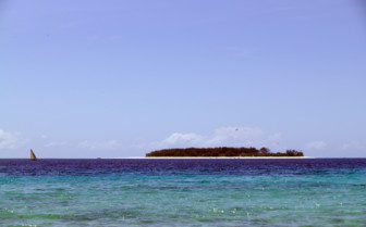 Picture of Mnemba Island