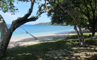 Hammock in the trees with white beach and turquoise water behind