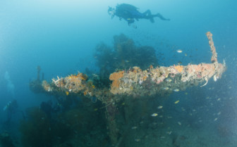 Picture of Wreck diving in Sangat