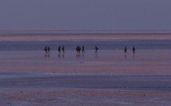 Picture of Walking in shallow waters Mozambique