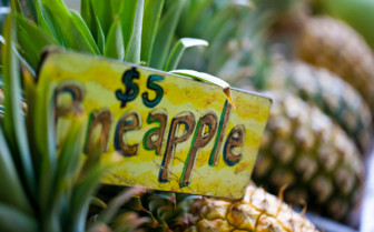 Picture of Hawaiian pineapples