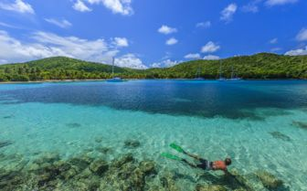 Diving in the grenadines