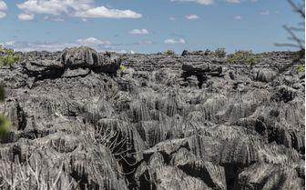 Pinnacles in Madagascar