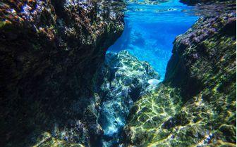 Diving in Gozo