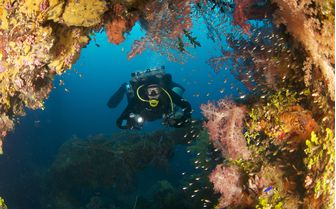 Diving, Chuuk Lagoon