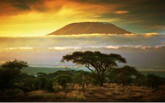 Peak of Kilimanjaro, Tanzania