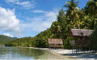 Nipa Bamboo Huts, Papua New Guinea