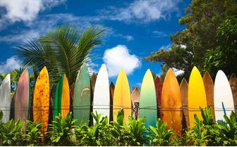 Surfboards, Hawaii, USA
