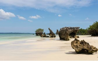 Pristine White Beach, Tanzania