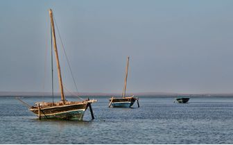 Three Dhows in the Water