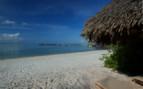 Picture of Beach on Mafia Island