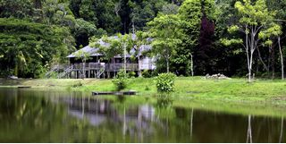 Picture of Borneo village house