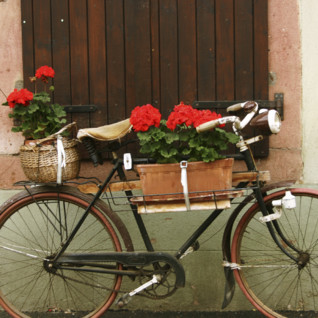 Cycle Provence and the Cote D'Azur