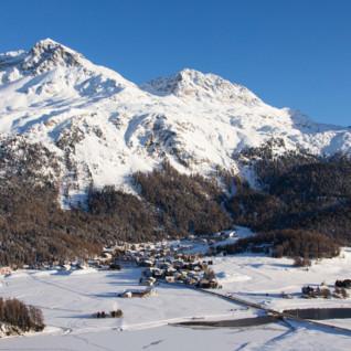 Nira Alpina