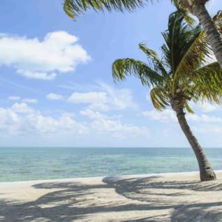 Beautiful Florida Keys Beach