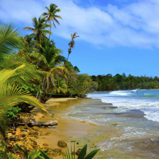 Costa Rica's Northern Caribbean Coast
