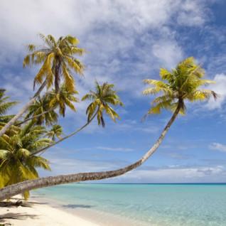 Tropical beach in Fiji