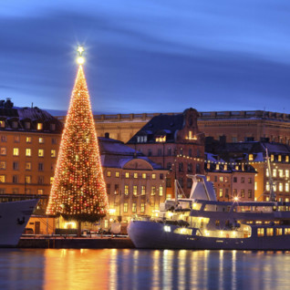 Christmas Tree in Stockholm