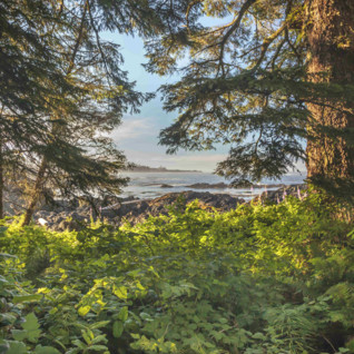 Wild Pacific Trail in Vancouver