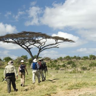 Walking Safari, Laikipia