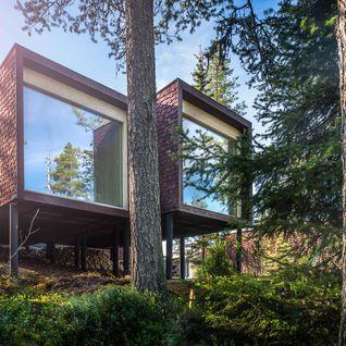Arctic Tree House