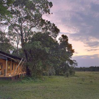 Elephant Pepper Camp Exterior