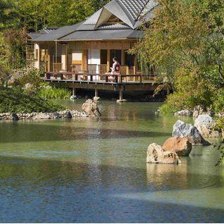 four seasons kyoto pond