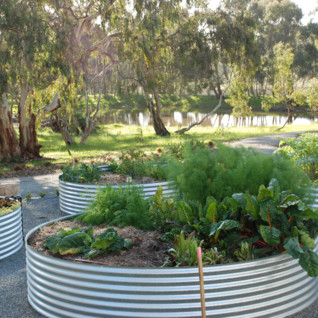 Thorn Park By The Vines
