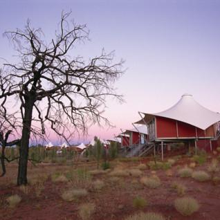 Longitude 131 luxury tent at dawn