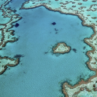 Australasia & the Pacific Islands
