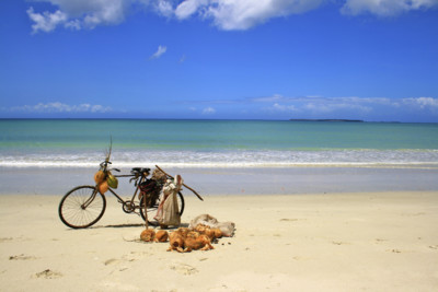 bike on a beach in zanzibar