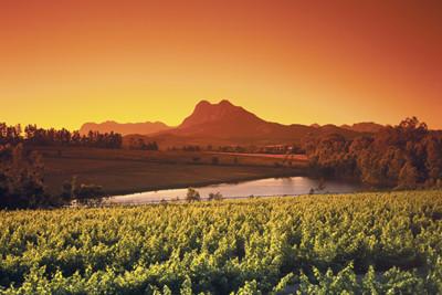 Sunset View across Winelands