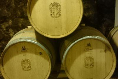 Dubrovnik Wineries