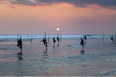 Traditional fishing in Galle