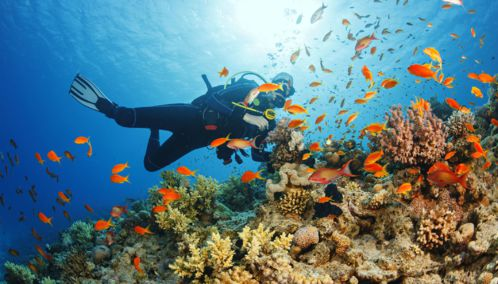 Scuba Diving, Philipines